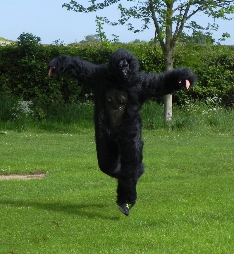 Oxford parkrun Gorilla