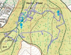 Wendover Woods Track